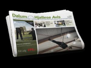 Dalum-Hjallese Avis